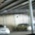 100603擋風玻璃4.JPG