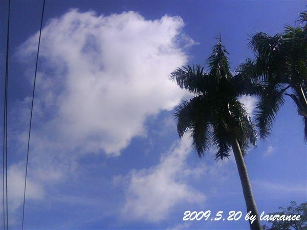 2009.5.20-2.JPG