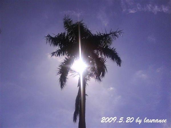 2009.5.20-3.JPG