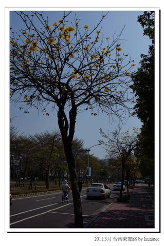 2011.3月台南東豐路-2.jpg