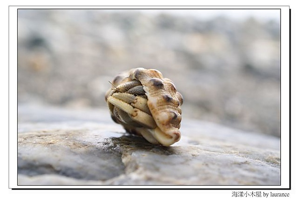 海漾小木屋-16.jpg