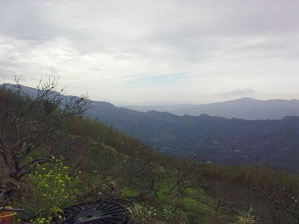 20100124149.jpg