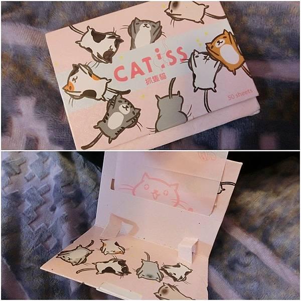 catiss (6).jpg