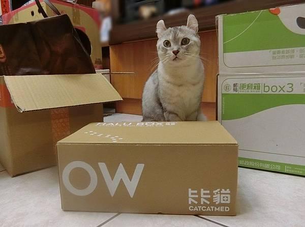 HALU BOX (1).JPG