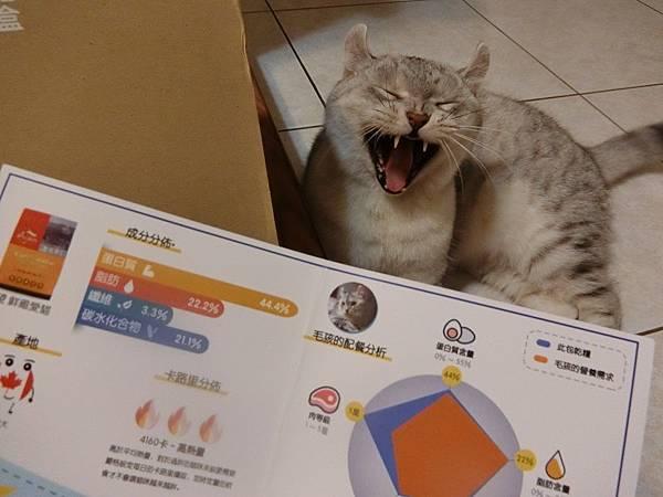 HALU BOX (8).JPG