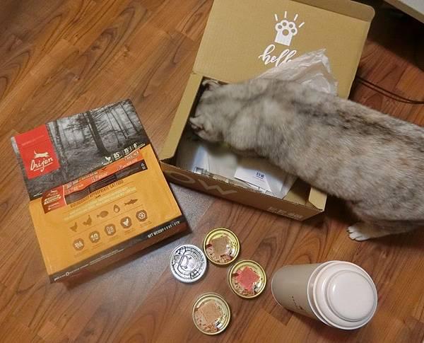 HALU BOX (13).JPG