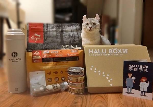 HALU BOX (17).JPG