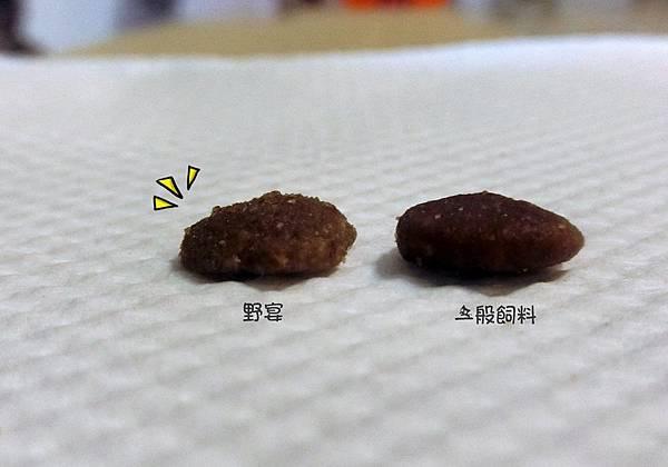 野宴 (3).JPG