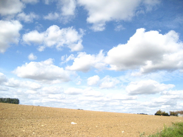 1228210010-麥田與天空的雲就是一幅畫.jpg
