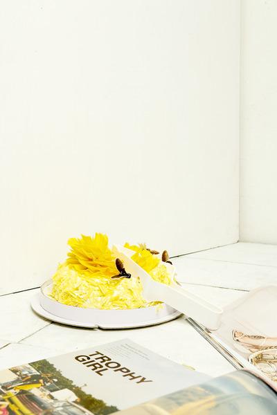 P's of Cake