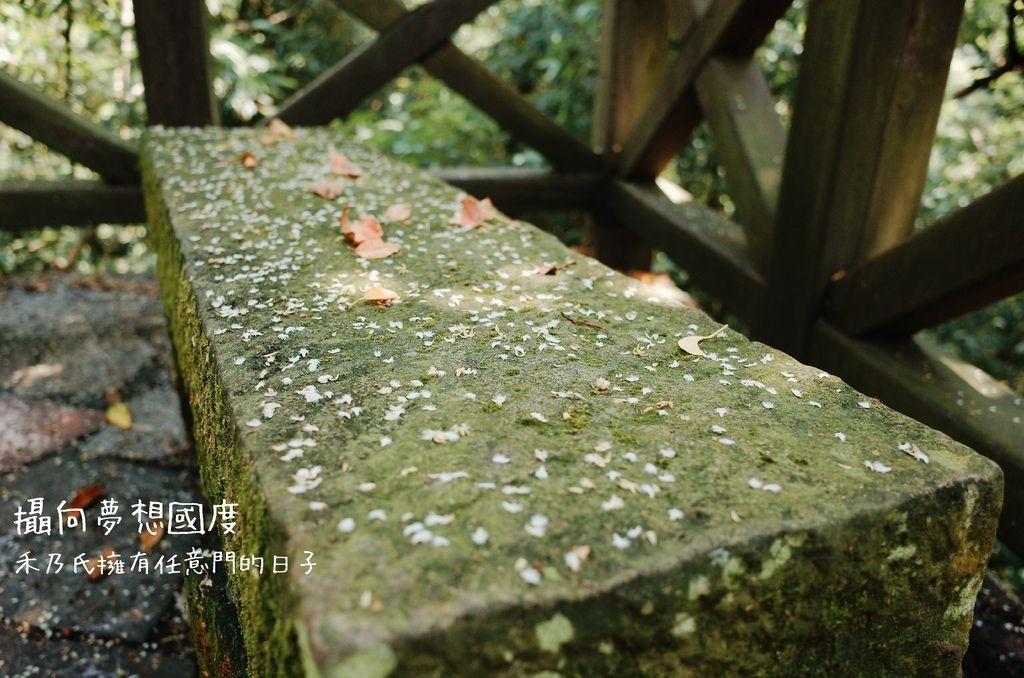16-09-22-13-53-10-028_deco.jpg