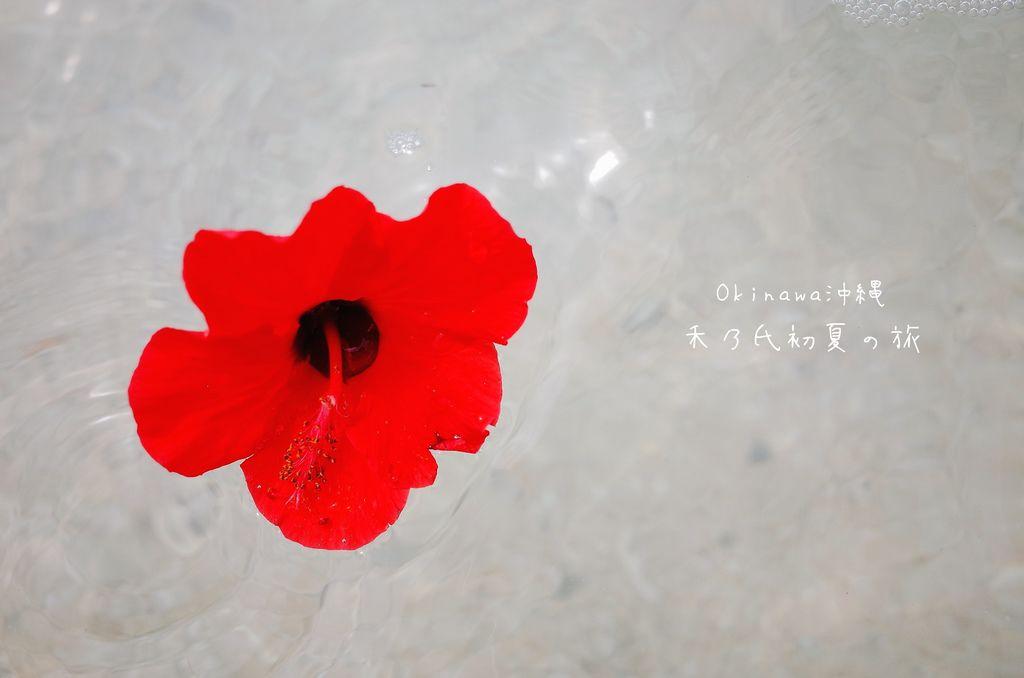 17-04-11-11-51-47-711_deco.jpg
