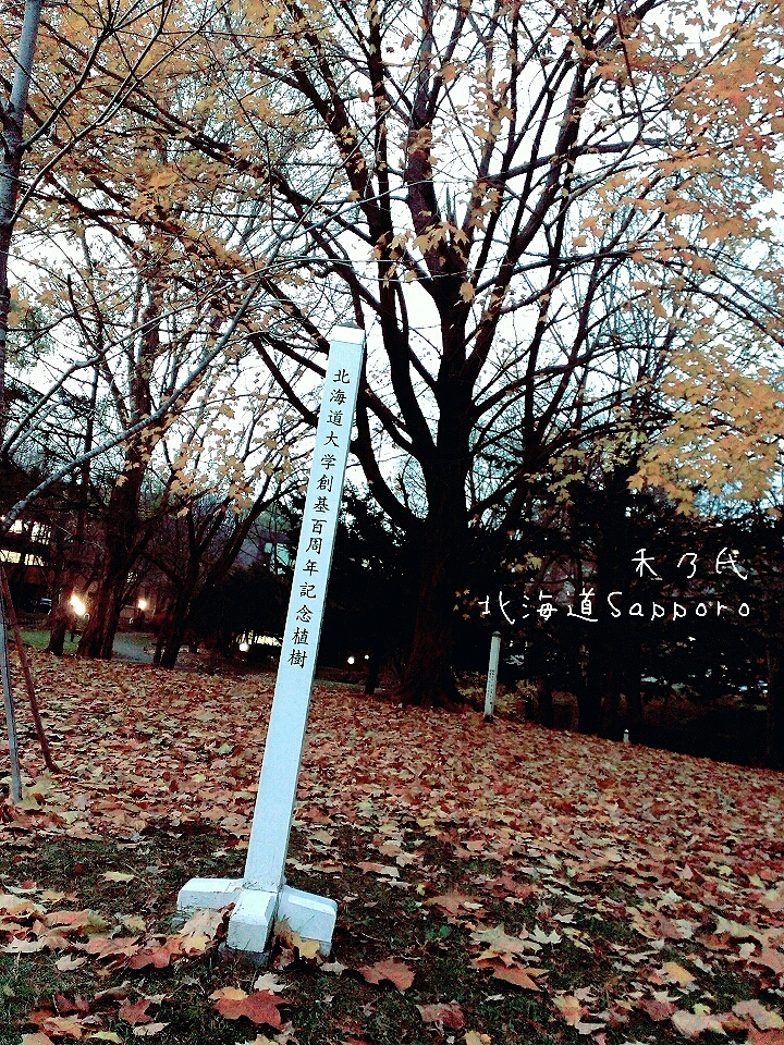 17-11-16-22-01-57-170_deco.jpg