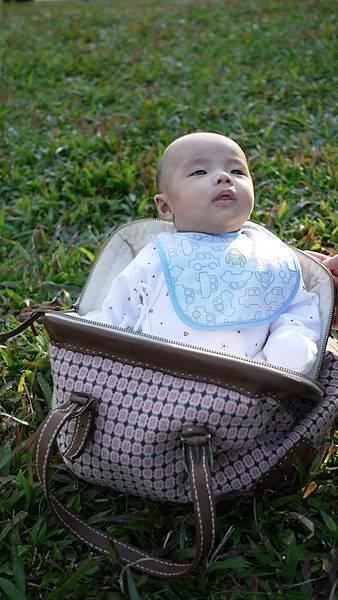 彤彤在袋子