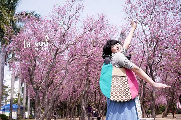 皮諾丘櫻花粉紅