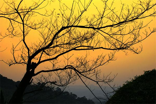 白雞山夕陽