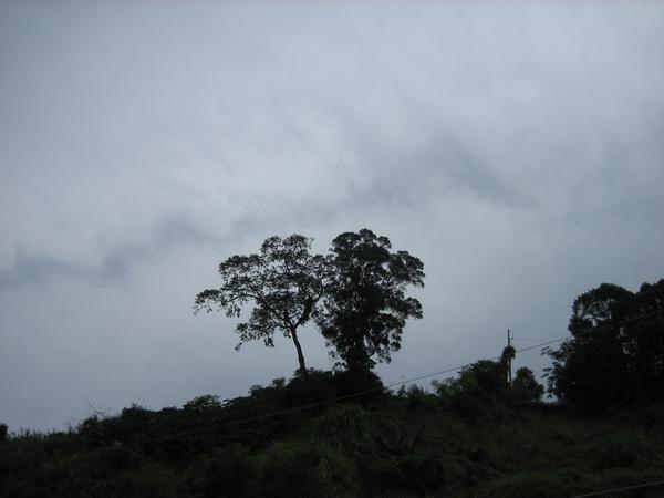 雲越來越多了