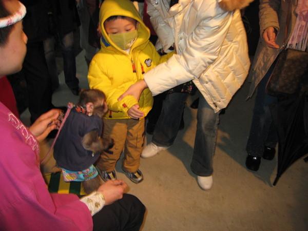 我在阿蘇猿劇場跟小猴子握手喔