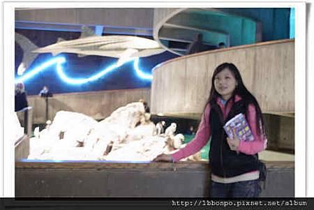 美東遊記紐約波士頓華盛頓費城NYCP1297自助旅行.jpg