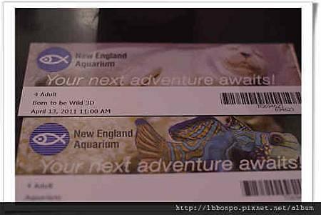 美東遊記紐約波士頓華盛頓費城NYCP1312自助旅行.jpg