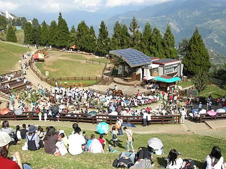 綿羊秀前,一堆人坐在草皮上等