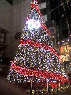 遠企外面的聖誕樹