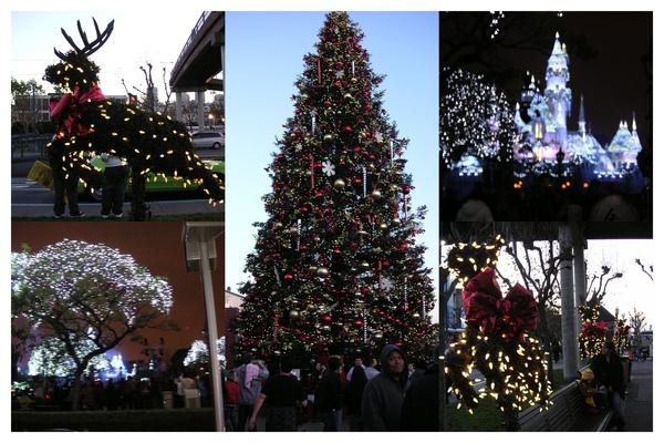 Photo_聖誕氣氛濃厚0002.jpg