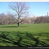 美東遊記紐約波士頓華盛頓費城100_0429_17114917自助旅行(001).jpg