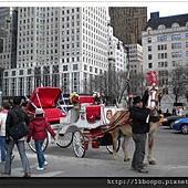 NYCP49.jpg
