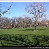 美東遊記紐約波士頓華盛頓費城100_0429_17115017自助旅行(003).jpg