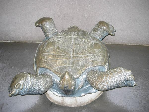 就是這隻翻過來的烏龜