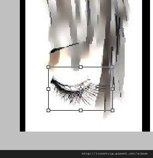 616pic009.jpg