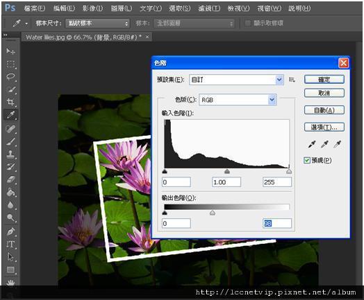 20121250PIC0009