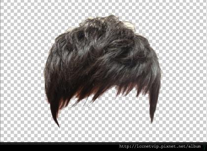 髮型 (7)
