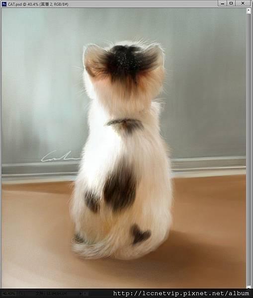 CAT_範例圖