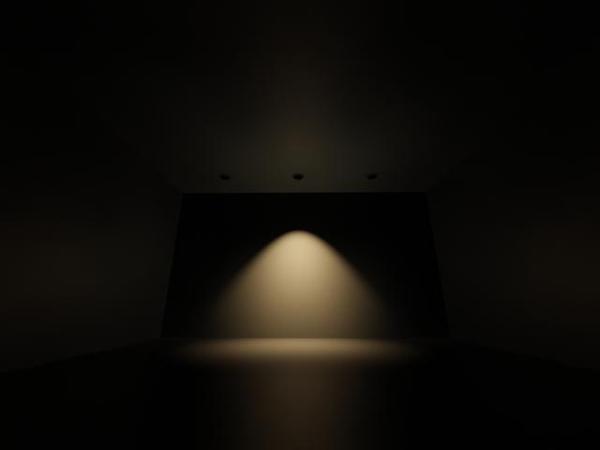 IES LIGHT 01.jpg