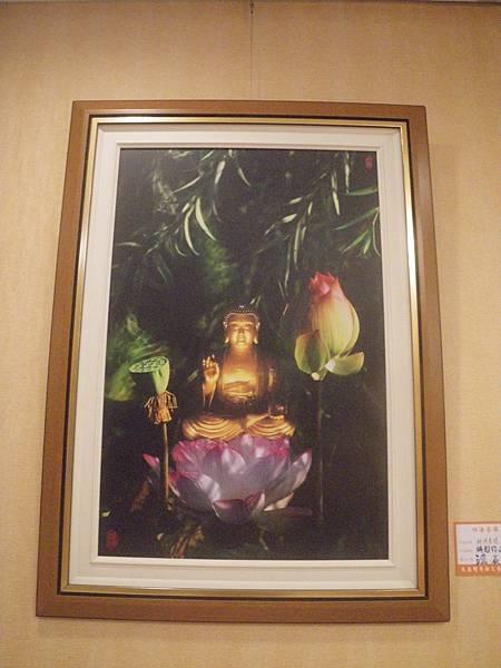 芝雅歸寧汪晨曦攝影展2015.5.2-3 044
