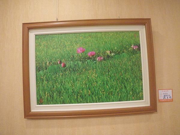 芝雅歸寧汪晨曦攝影展2015.5.2-3 043
