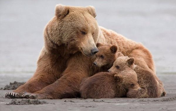 熊孩子-17.jpg