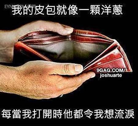 我的錢包就像洋蔥.jpg