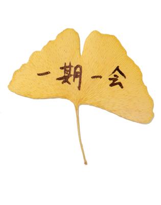 1-9-1 Ichigo-ichie.png