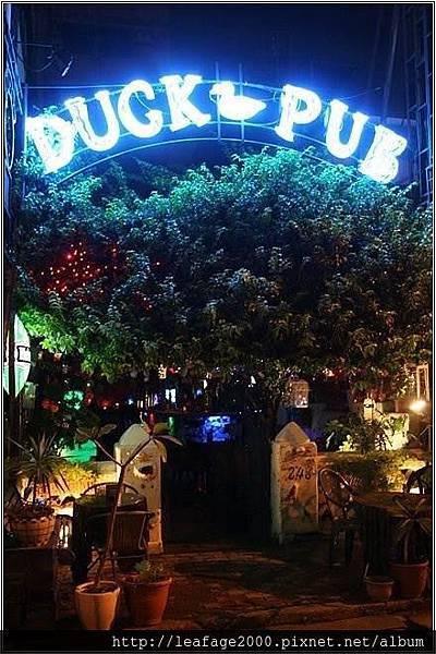 Duck Pub 02.jpg