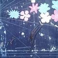 IMG_20110828_120930.jpg