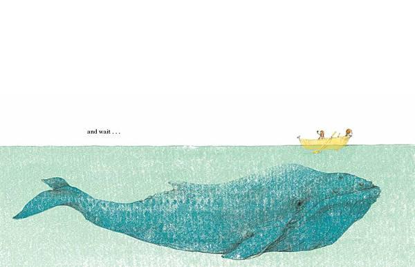 如果你想看鯨魚-13