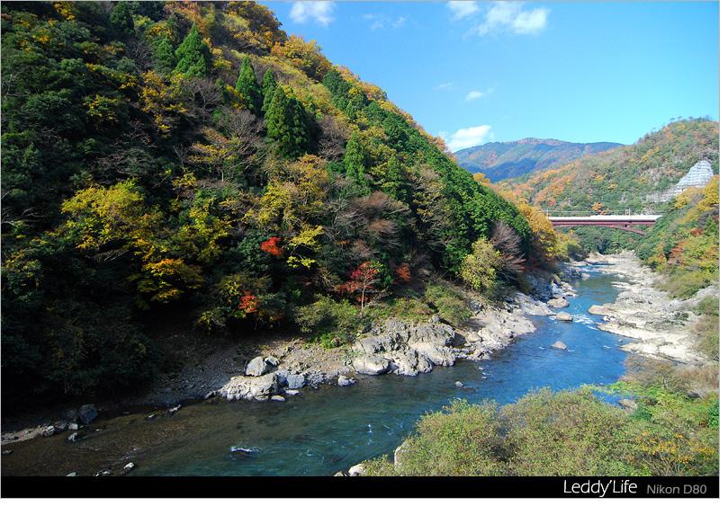 06-嵐山2.jpg