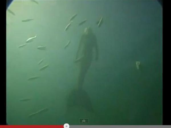 大堡礁海底攝影驚見人魚