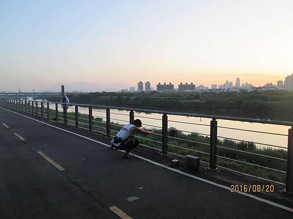 民國105.08.20大漢溪左岸自行車道板橋到樹林段 (2).jpg