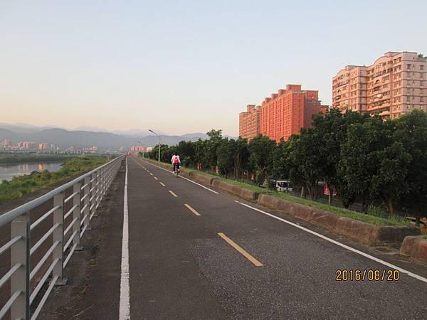 民國105.08.20大漢溪左岸自行車道板橋到樹林段 (3).jpg