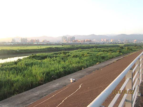 民國105.08.20大漢溪左岸自行車道板橋到樹林段 (10).jpg