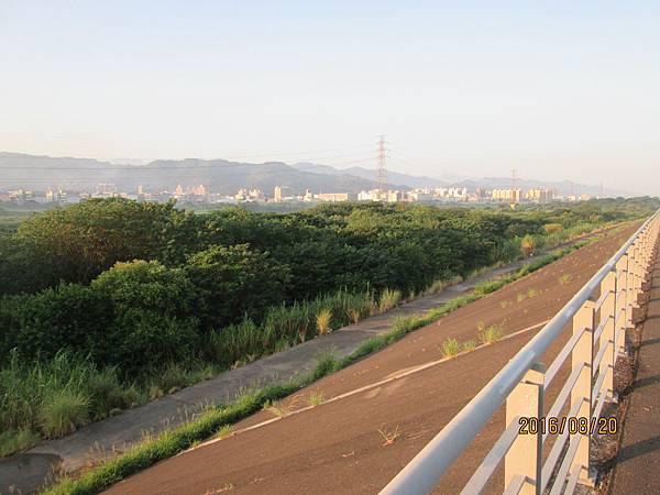民國105.08.20大漢溪左岸自行車道板橋到樹林段 (20).jpg